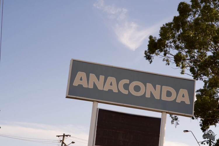 オーストラリアアナコンダ